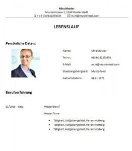 Muster-Lebenslauf-Vorlage-Bauingenieur