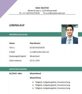 Muster-Lebenslauf-Vorlage-Datenbank-Admin