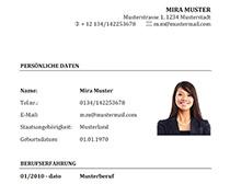 Muster-Lebenslauf-Vorlage-Elektrotechniker_1