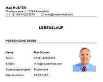 Muster-Lebenslauf-Vorlage-Finanzbuchhalter_1