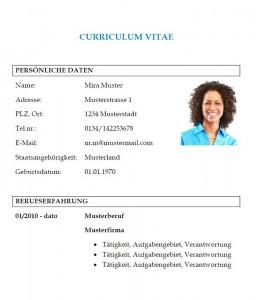 Muster-Lebenslauf-Vorlage-Informationsdesigner